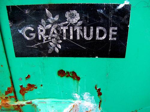 Gratitude (c) shannonkringen 4786965539_b92563f621