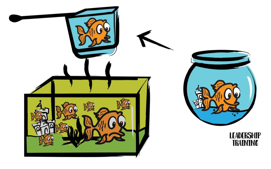 The Dirty Fish Tank Training Model